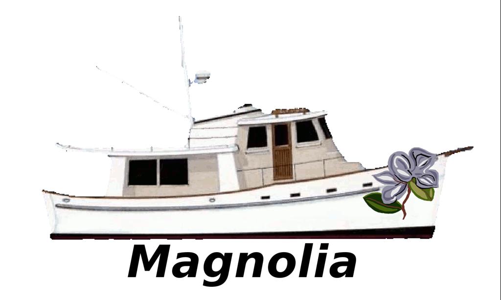 2017-07-03-Magnolia-M-1
